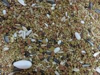 Pelza Papegaai middel en kleine soorten